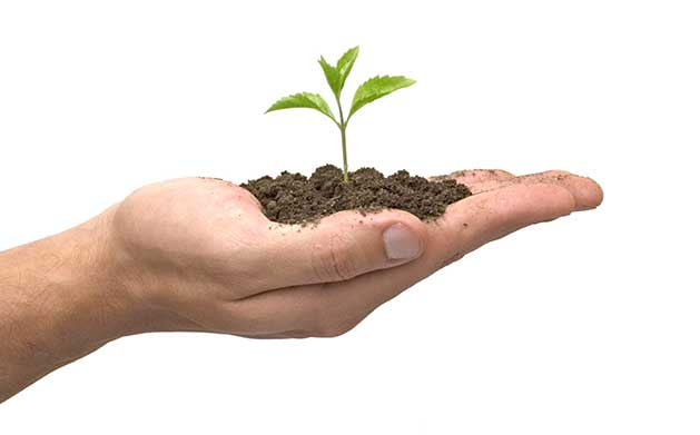 Je plante, donc je suis