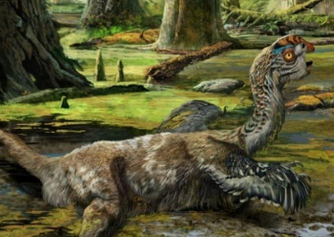 Un dinosaure de plus au catalogue