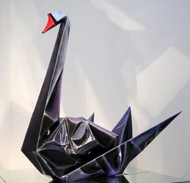 Insolite : Cygne noir