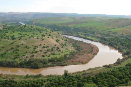 Contribution des arbres fruitiers au développement durable de la région d'Abda