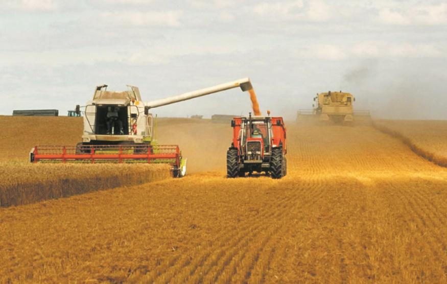 Les prix mondiaux des produits alimentaires en baisse pour la cinquième année consécutive