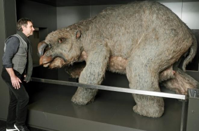 L'extinction d'animaux géants en Australie est due à l'homme