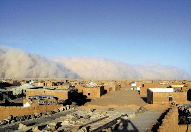 Purge au sein du Polisario