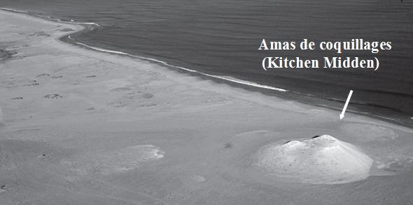 Amas de coquillage néolithique (5 000 avant J.-C.) du type de ceux qu'on trouve dans le Sahara marocain, entre Oued Draa et Dakhla ; on aperçoit à gauche une colline de coquilles de plus de dix mètres de hauteur, témoin de l'exploitation très ancienne des ressources marines du littoral du Maroc ; photo : Abdeljebbar Qninba.