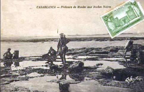 Pêcheurs de moules à marée basse lors de l'équinoxe de l'automne sur les côtes de Casablanca en 1914.