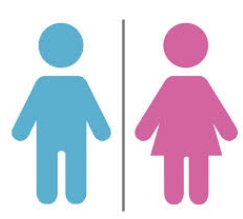 L'école pour l'égalité de genre : Atelier d'échanges et de réseautage