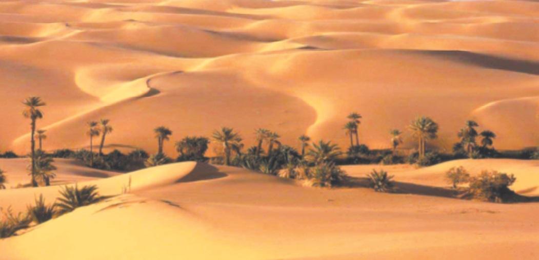 Lehjeila, l'étoile filante qui a éclairé le Sahara, s'est éteinte à jamais