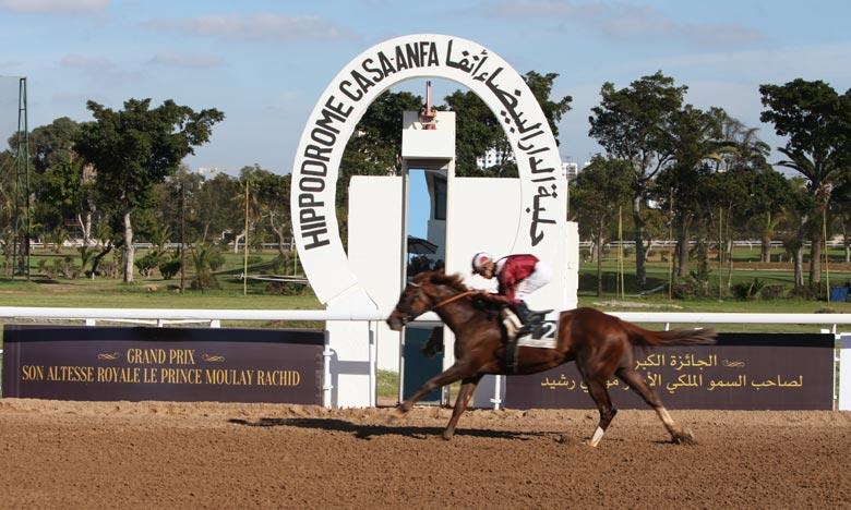 Le cheval Famous Mark remporte le GP SAR  le Prince Moulay Rachid des courses hippiques