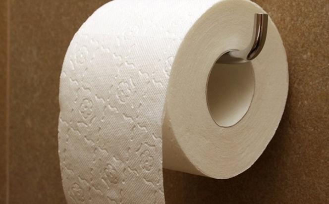 insolite voleurs de papier toilette. Black Bedroom Furniture Sets. Home Design Ideas