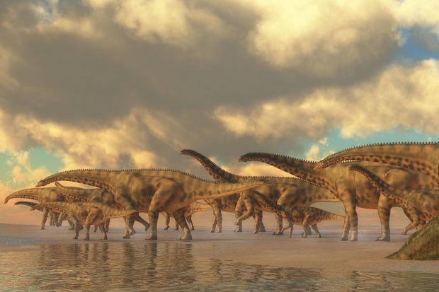 L'arbre généalogique des dinosaures  remis en cause