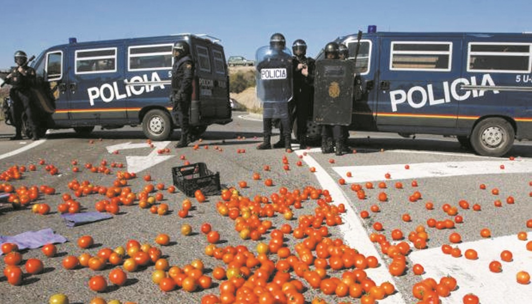 Les produits agricoles marocains de nouveau dans le collimateur de groupements espagnols en mal d'idées