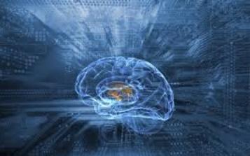 Le cerveau des super-seniors reste plus jeune