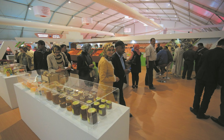 L'agriculture marocaine se projette à pas sûrs dans l'avenir