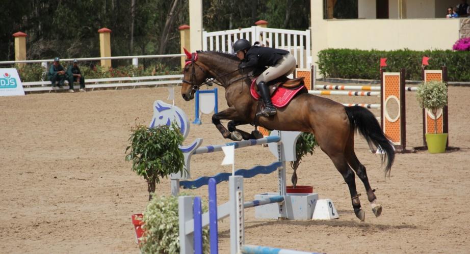 Concours de saut d'obstacles 3* du Royal Club Equestre: Said Nassiry décroche le GP