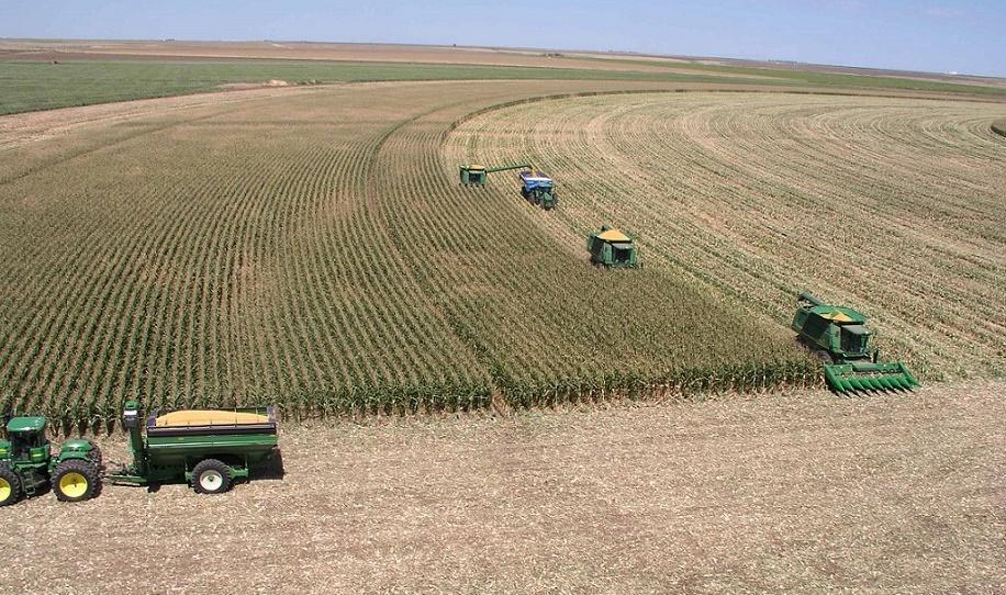 La reprise de l'activité agricole dope l'économie nationale