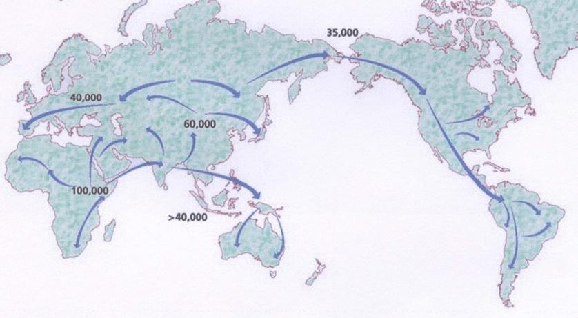 Depuis quand l'homme peuple-t-il les différents continents ?