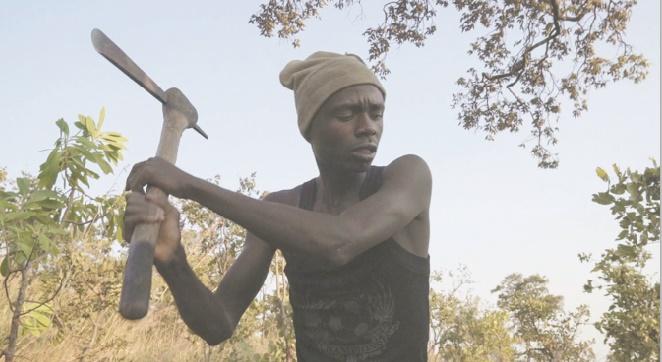 """Makala"", Grand prix de la Semaine de la critique à Cannes"
