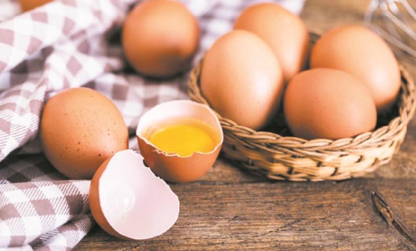 Des œufs pour une bonne croissance