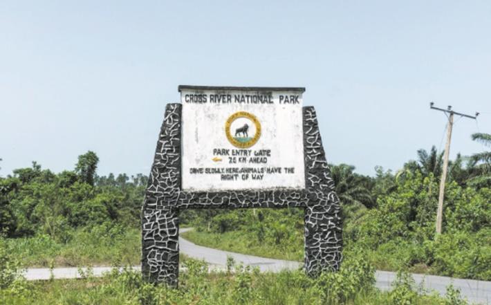 Cross River Park, le dernier eden du Nigeria menacé