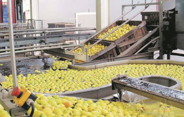 Améliorer le positionnement du Maroc sur le marché africain des produits agroalimentaires