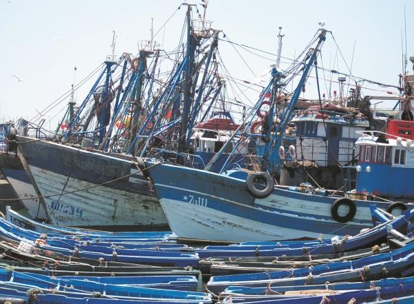 Progression de 7% de la production de la pêche côtière et artisanale en 2016