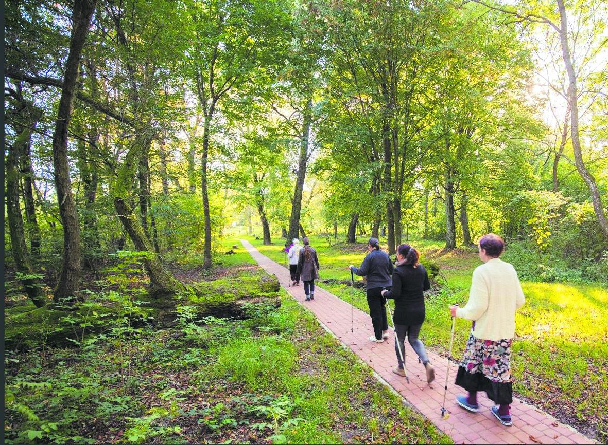 Un jardin suisse pour soigner des troubles psychiques en Pologne