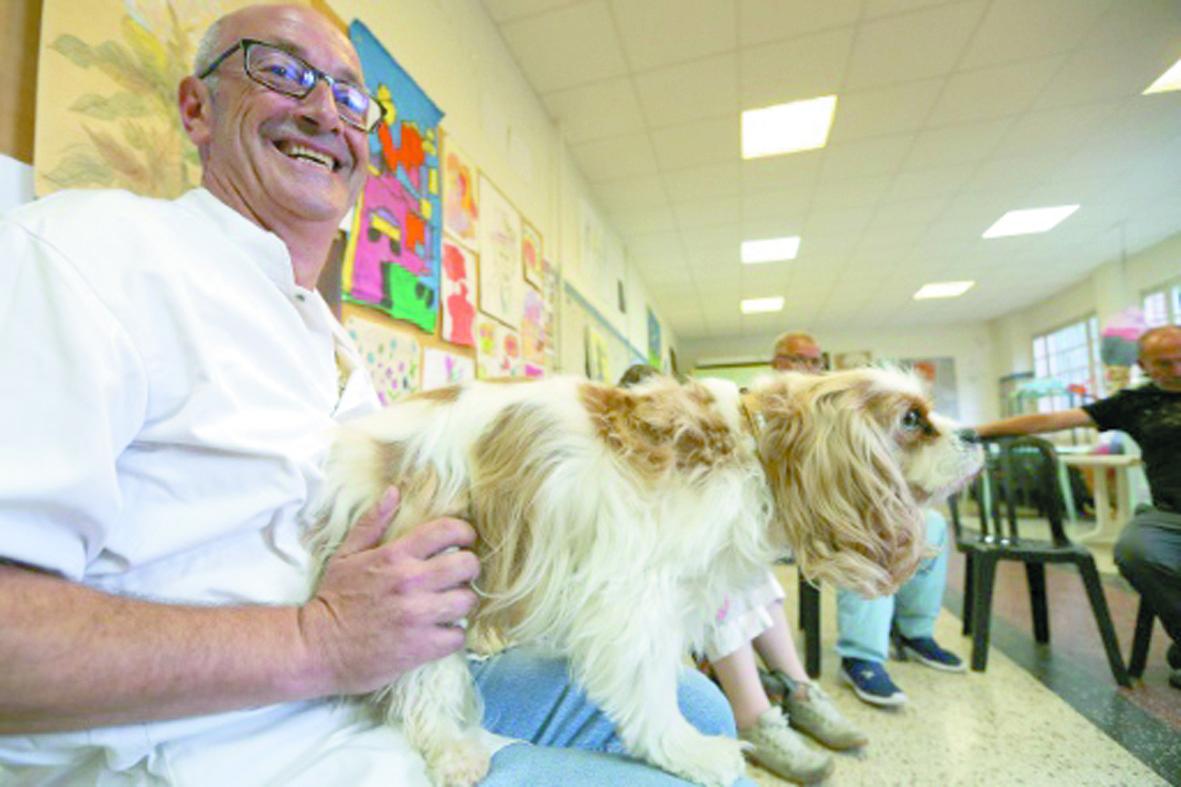Des chiens pour soigner des malades mentaux