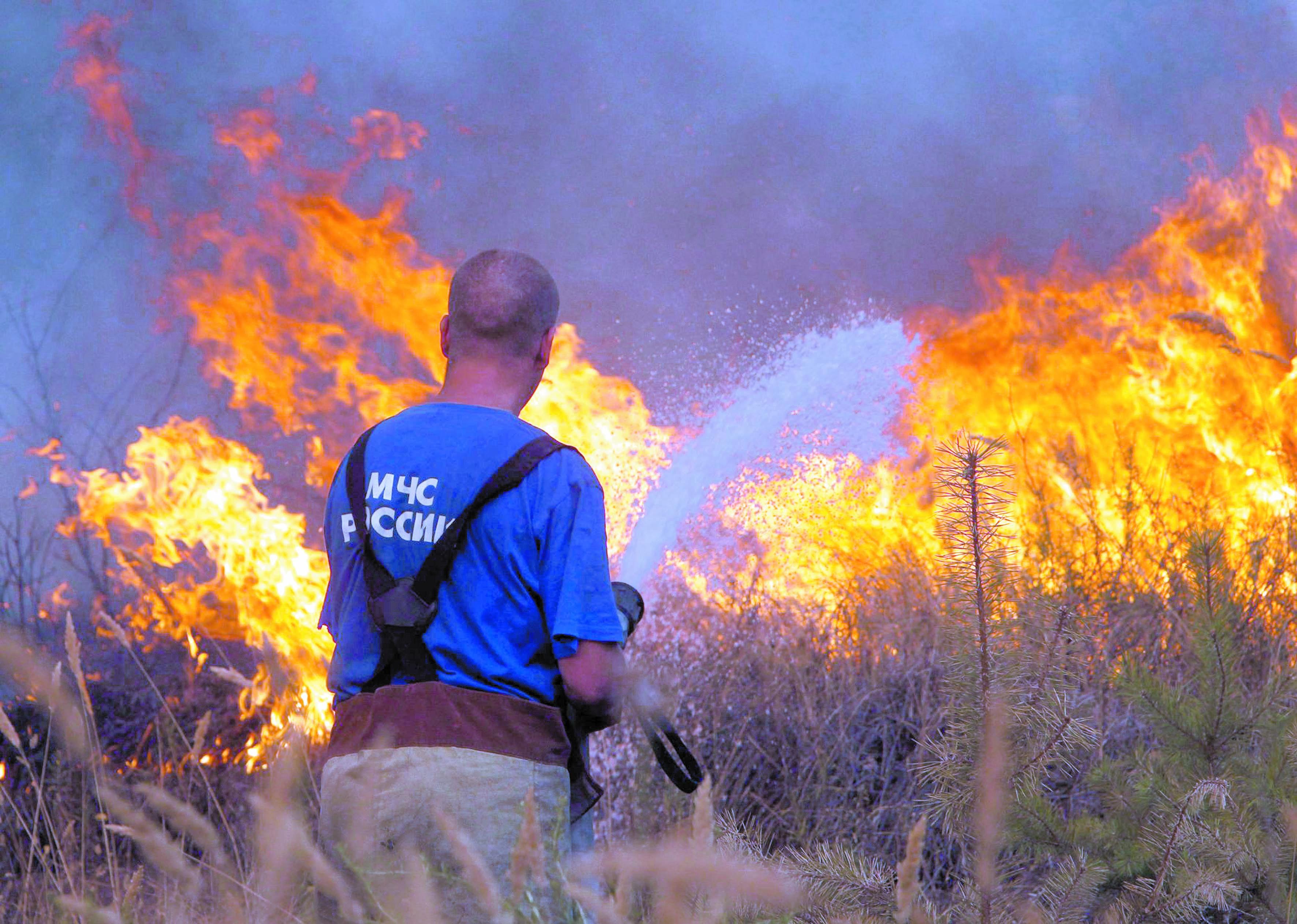 Les feux de forêt continuent  à faire rage à travers le monde