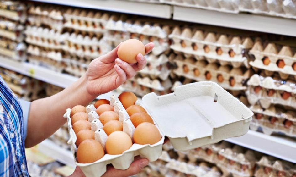 Scandale des œufs contaminés au «Fripornil» en Europe : qu'en est-il au Maroc ?