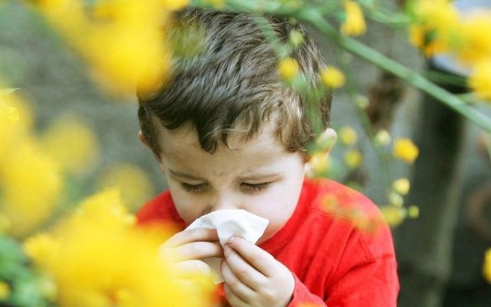 Réponses d'expert : C'est vrai qu'il y a moins d'allergies à la montagne?