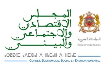 Le focus du rapport 2016 du CESE