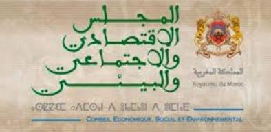 Le CESE préconise d'encourager le secteur de l'éducation