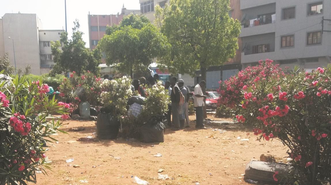 Expulsés de Nador et largués près de la gare routière de Casablanca