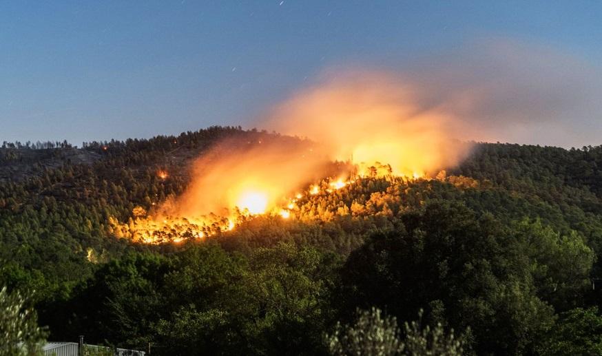 Plus de 320 incendies de forêts déclarés depuis le début de l'année