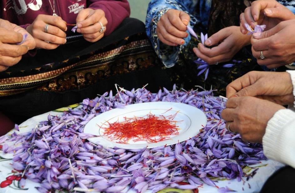 Onzième édition du Festival International du safran de Taliouine