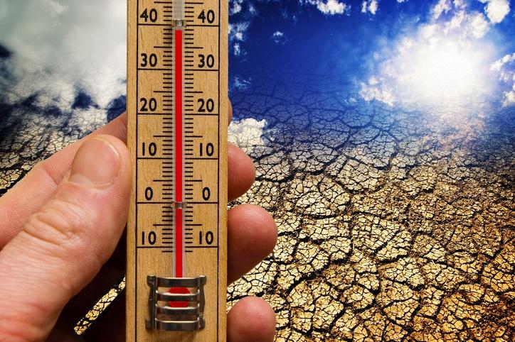 Le réchauffement climatique, seul responsable de la canicule en 2016
