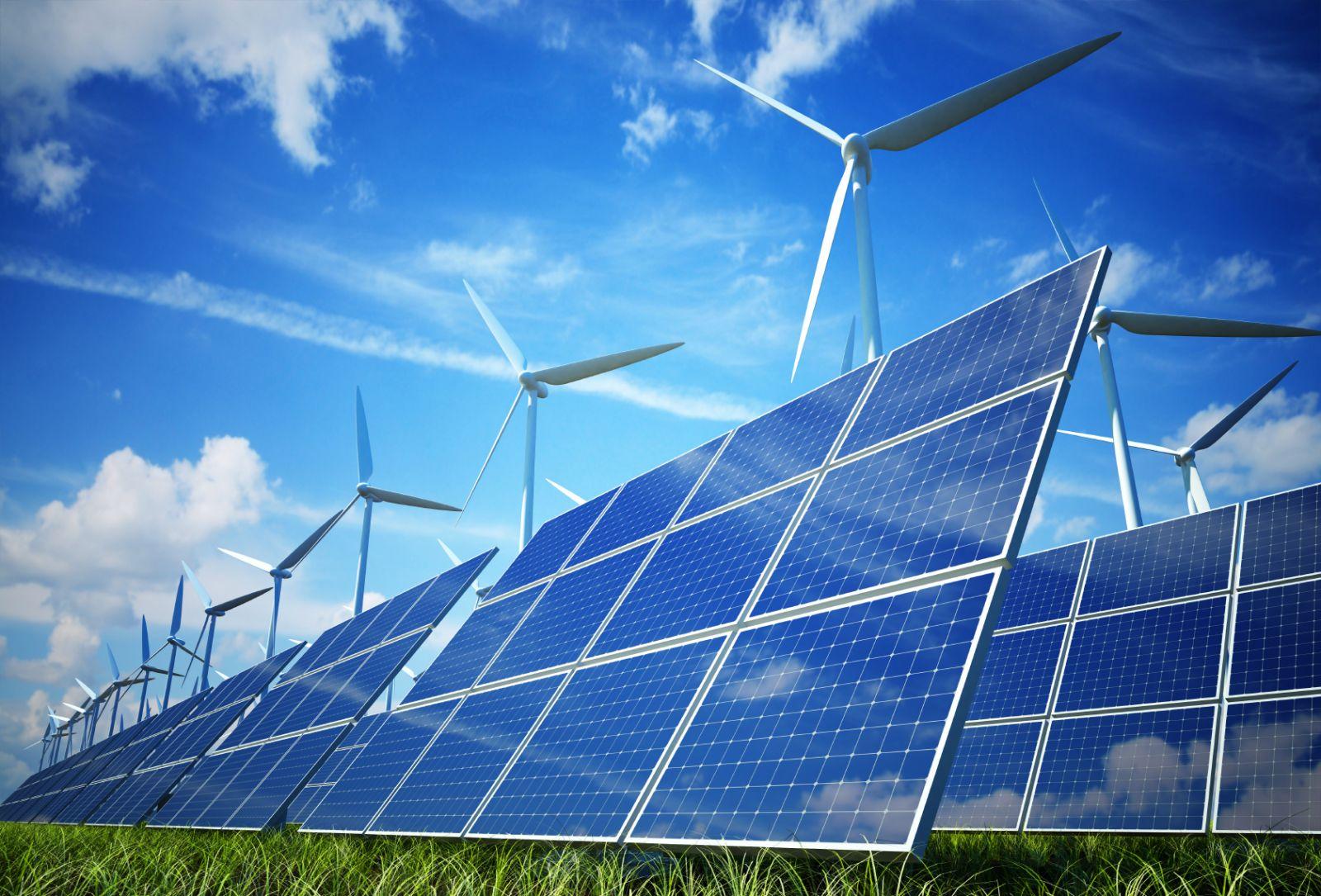 Les énergies renouvelables ont le vent en poupe