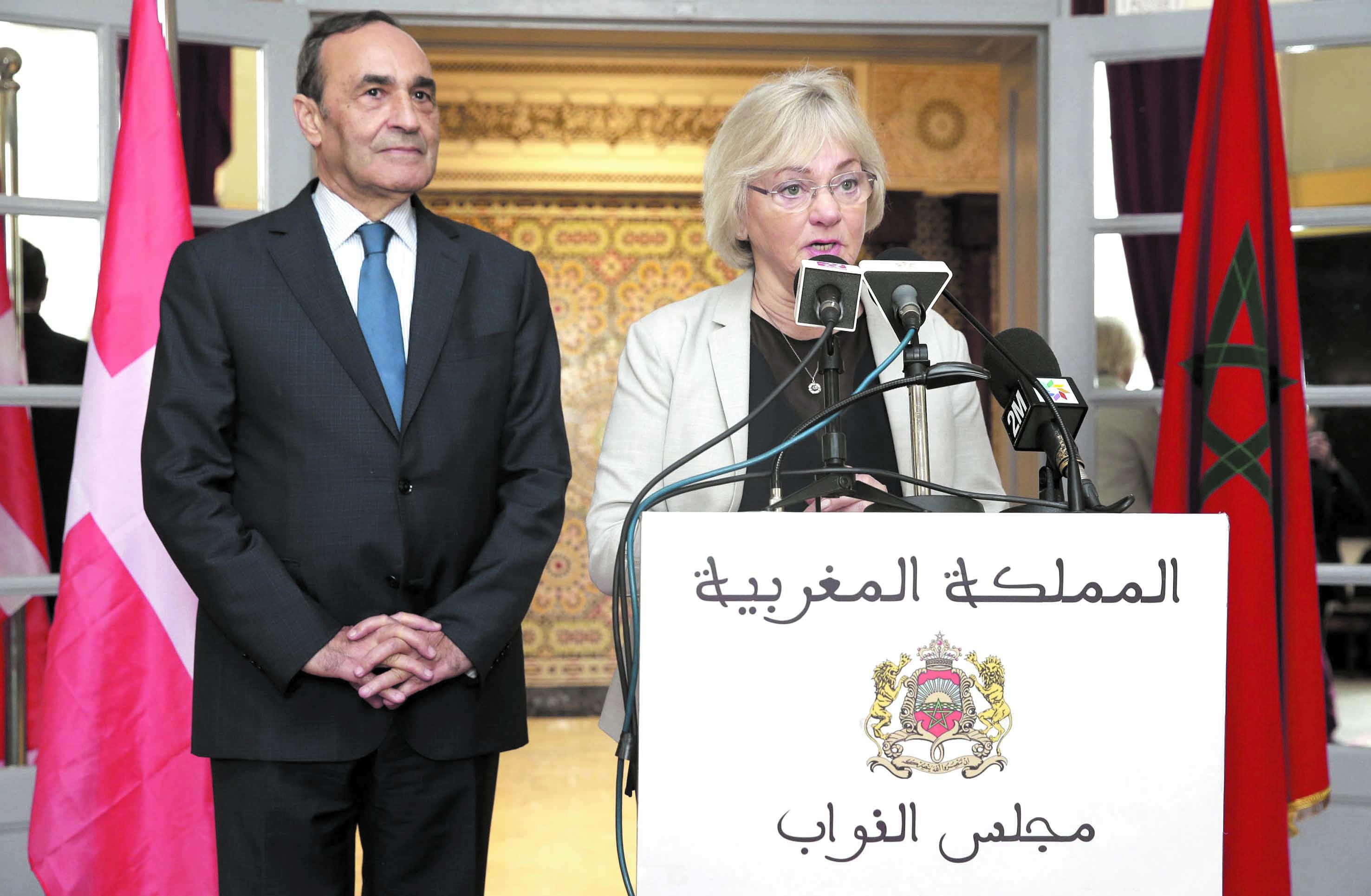 Habib El Malki s'entretient avec la présidente du Parlement danois