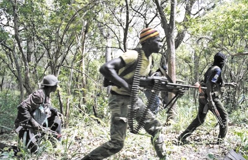 13 morts dans une attaque  à Ziguinchor au Sénégal