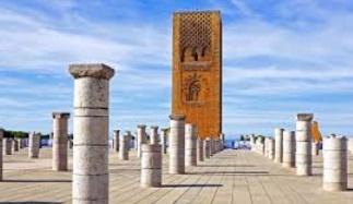 Symposium international à Rabat sur les oiseaux sauvages et zoonoses émergentes