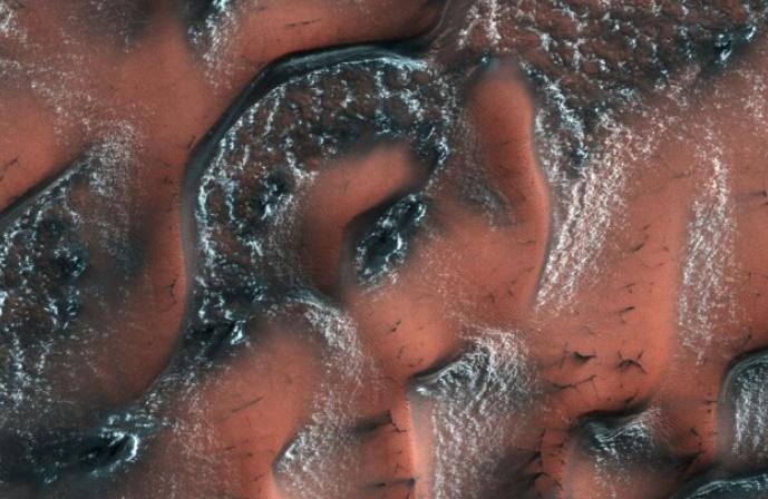 De la glace en abondance près de la surface de Mars