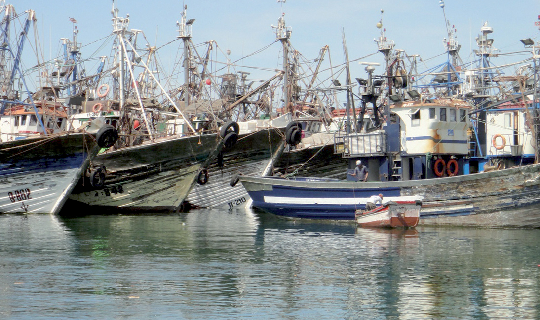 Les professionnels marocains et espagnols de la pêche en conclave à Dakhla