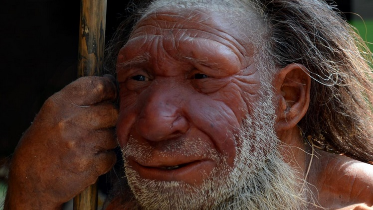 L'homme de Néandertal avait un gros nez pour mieux survivre au froid