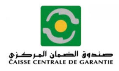 25 MMDH de crédits garantis et octroyés en 2017 par la CCG