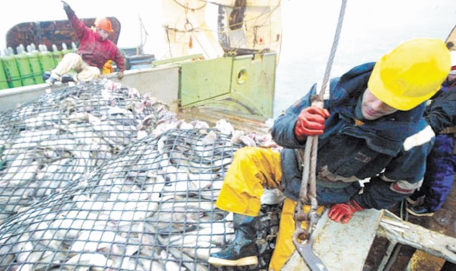 Poursuite des négociations sur l'accord de pêche entre le Maroc et l'UE
