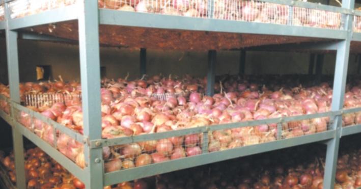 Le Maroc et les Pays-Bas conviennent de construire une unité de stockage des oignons à El-Hajeb