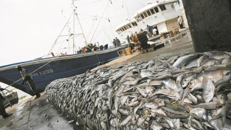 Un premier round conclu dans l'accord de pêche Maroc-UE :  Il n'y a ni rupture  ni suspension.  Le reste devra suivre