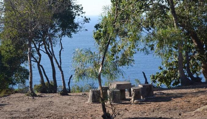 Lancement d'un programme de sensibilisation à la préservation des forêts urbaines de Tanger