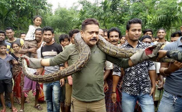 Insolite : Il pose avec un python