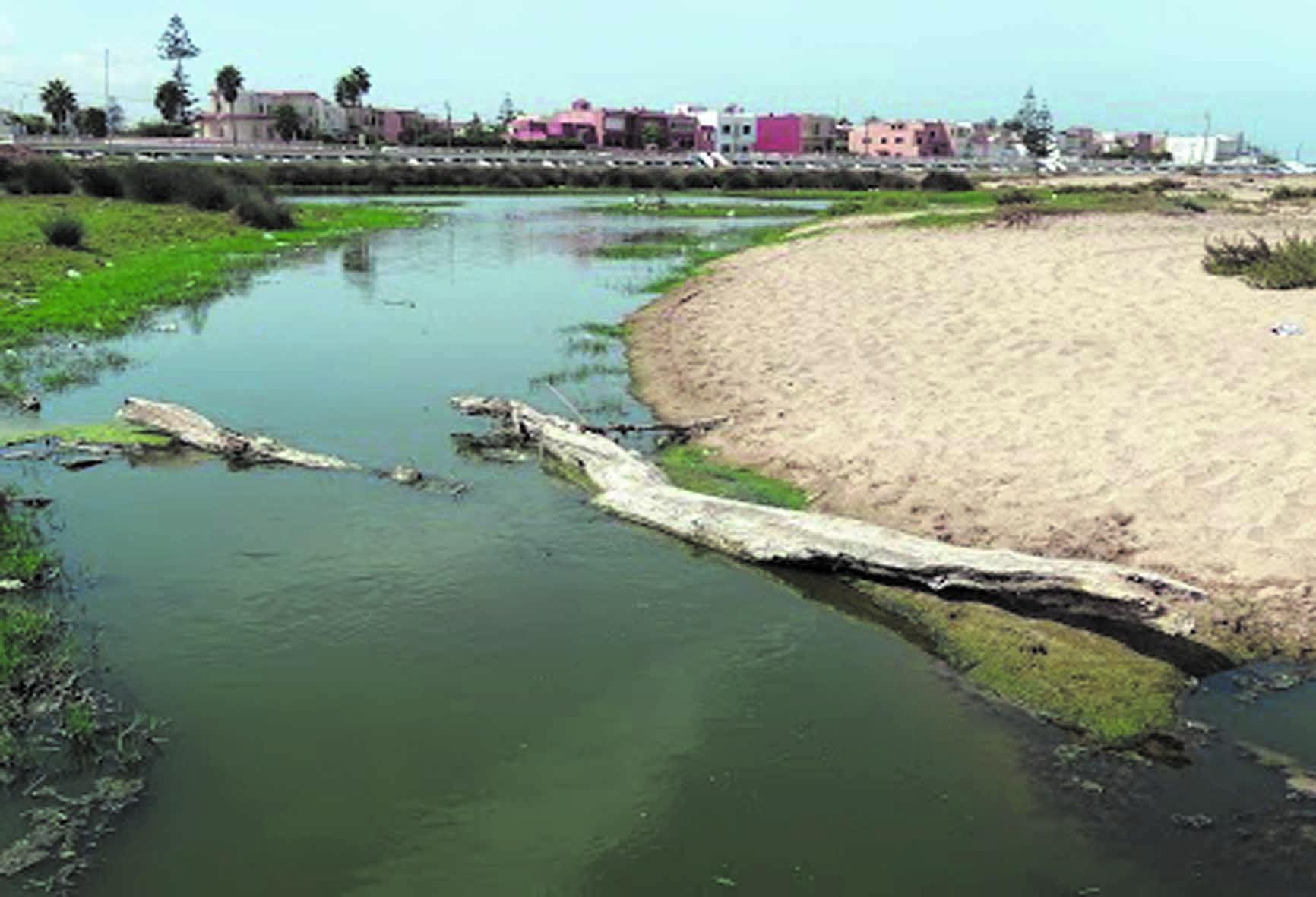 Désastre écologique à la plage Oued Merzeg
